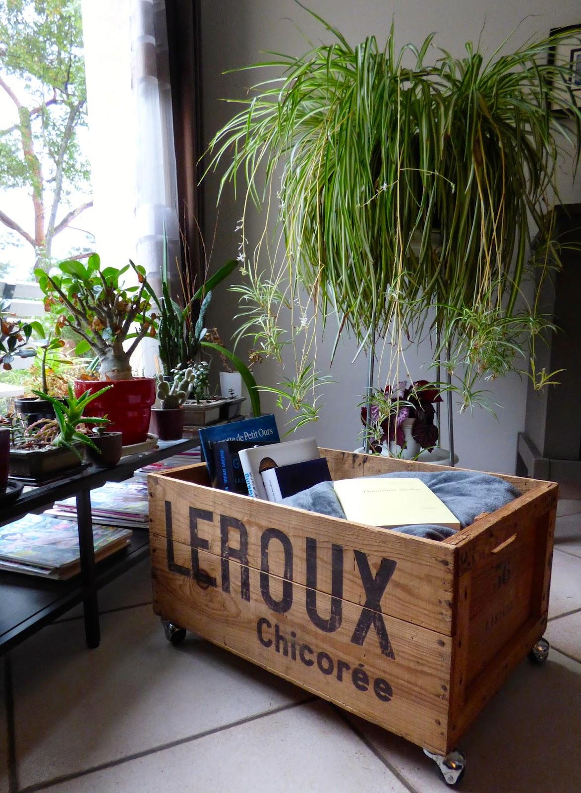 une semaine paris for t recycler une vieille caisse en bois retrouve une nouvelle jeunesse. Black Bedroom Furniture Sets. Home Design Ideas