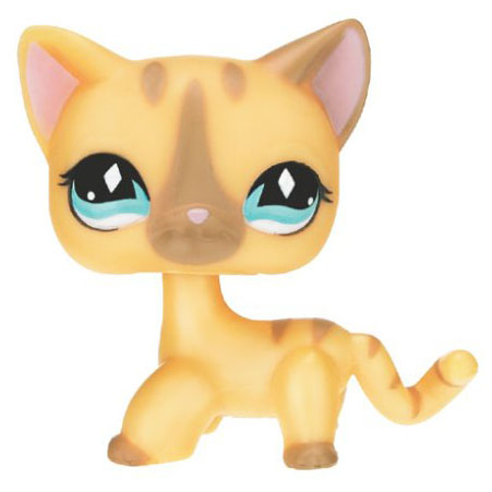 Image Result For The Little Pet