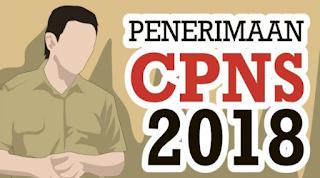 Dokumen Yang Harus Di Siapkan Untuk Daftar CPNS