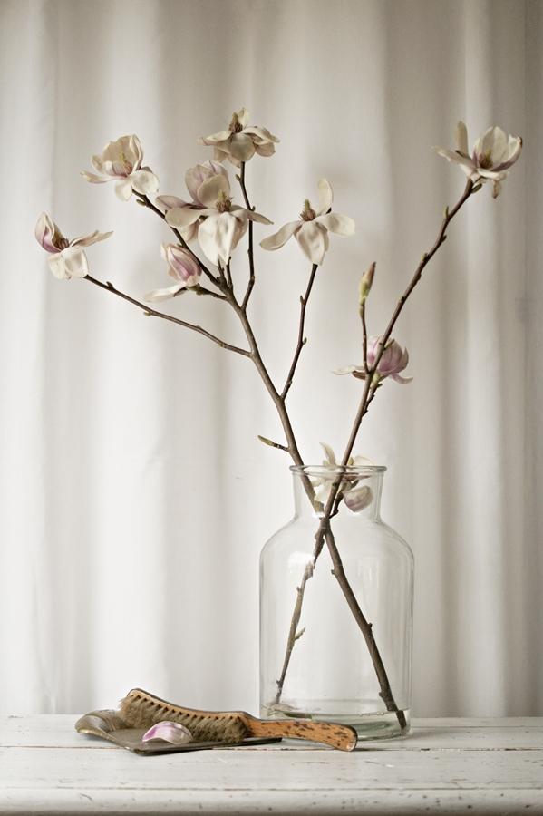 {FLOWER FRIDAY} Elegante Schönheit