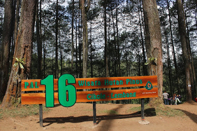 tempat wisata Hutan Pinus Pal 16 Cikole