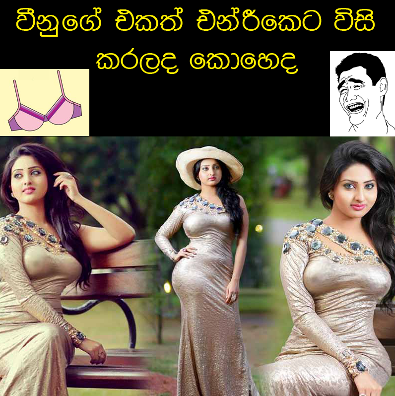vinu new photoshoot - hot vinu udani photoshop photos vinu siriwardana
