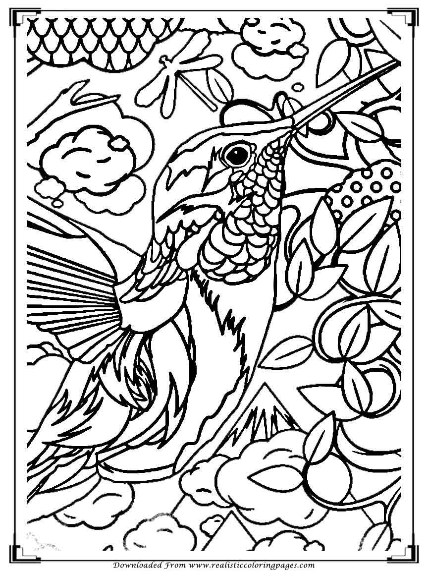 Printable Birds Coloring Pages For Adults | Realistic ...