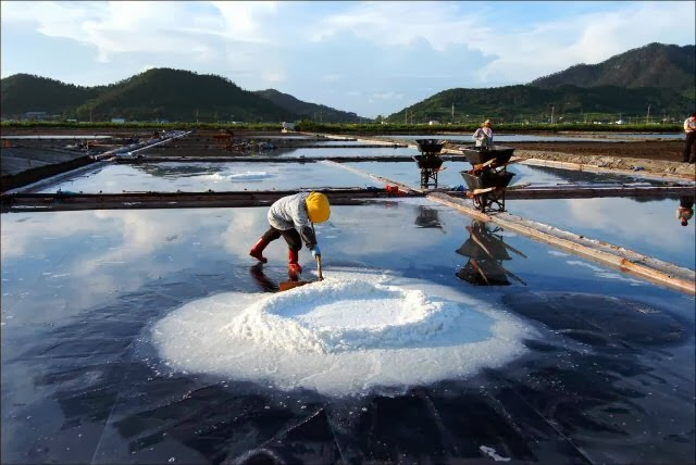 garam laut pantai barat korea