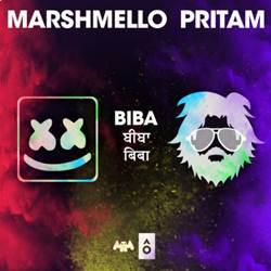 Baixar Música BIBA - Marshmello e Pritam Mp3