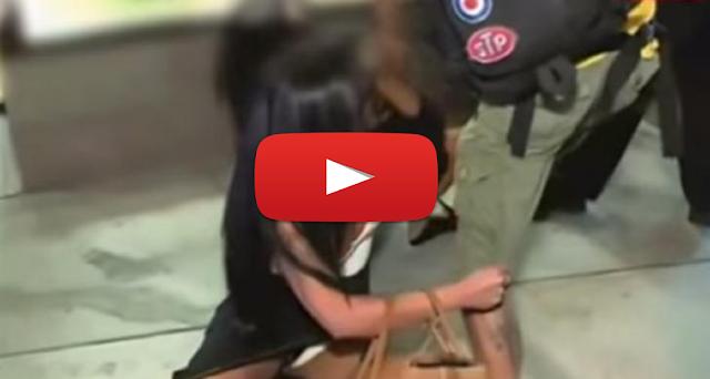 Βίντεο: Κορίτσια πολυτελείας παίζουν άσχημο ξύλο μεταξύ τους!