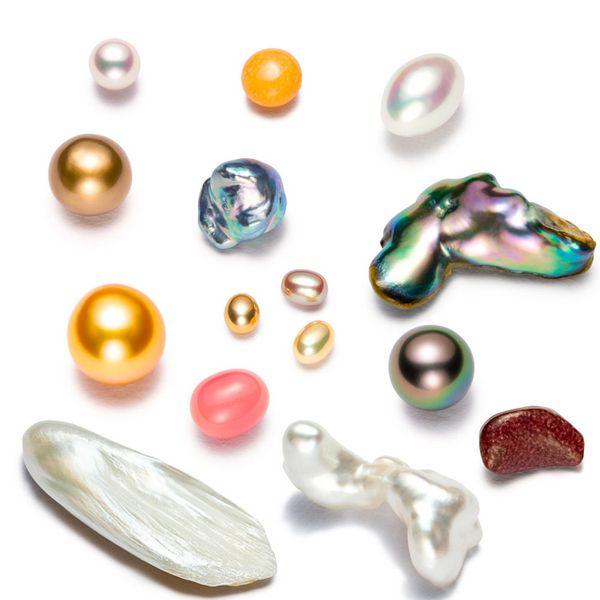 CÁC LOẠI TRÂN CHÂU (Ngọc Trai) - Margarita, Perla, Pearl - Nguyên liệu làm Thuốc Ngủ, An Thần, Trấn Kinh