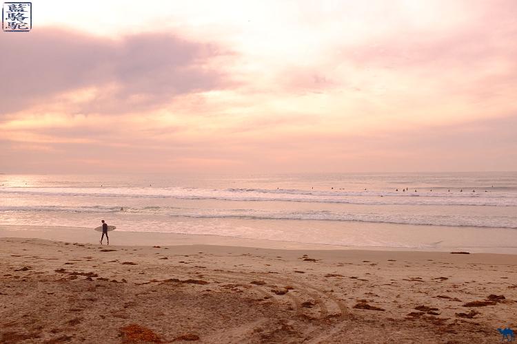 Le Chameau Bleu -  Balade sur la plage de la Jolla - Californie du Sud USA