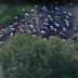 Vídeo de la caída masiva en la Vuelta al Algarve 2019
