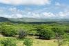 La Guajira: santuario del bosque seco tropical en Colombia