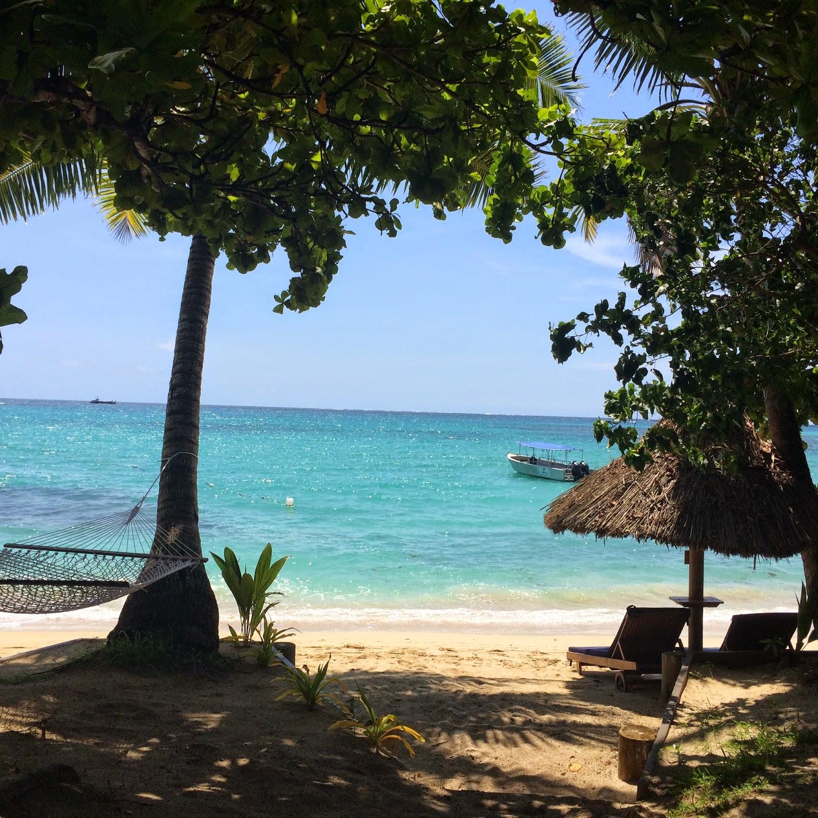 Fiji Beaches: One More Bite Blog