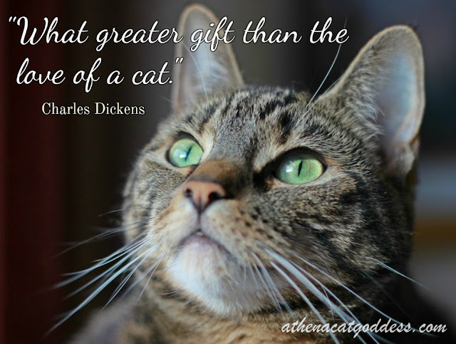 what greater gift than the love of a cat