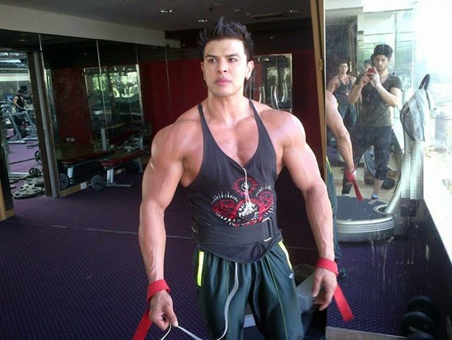 Sahil Khan Body Workouts