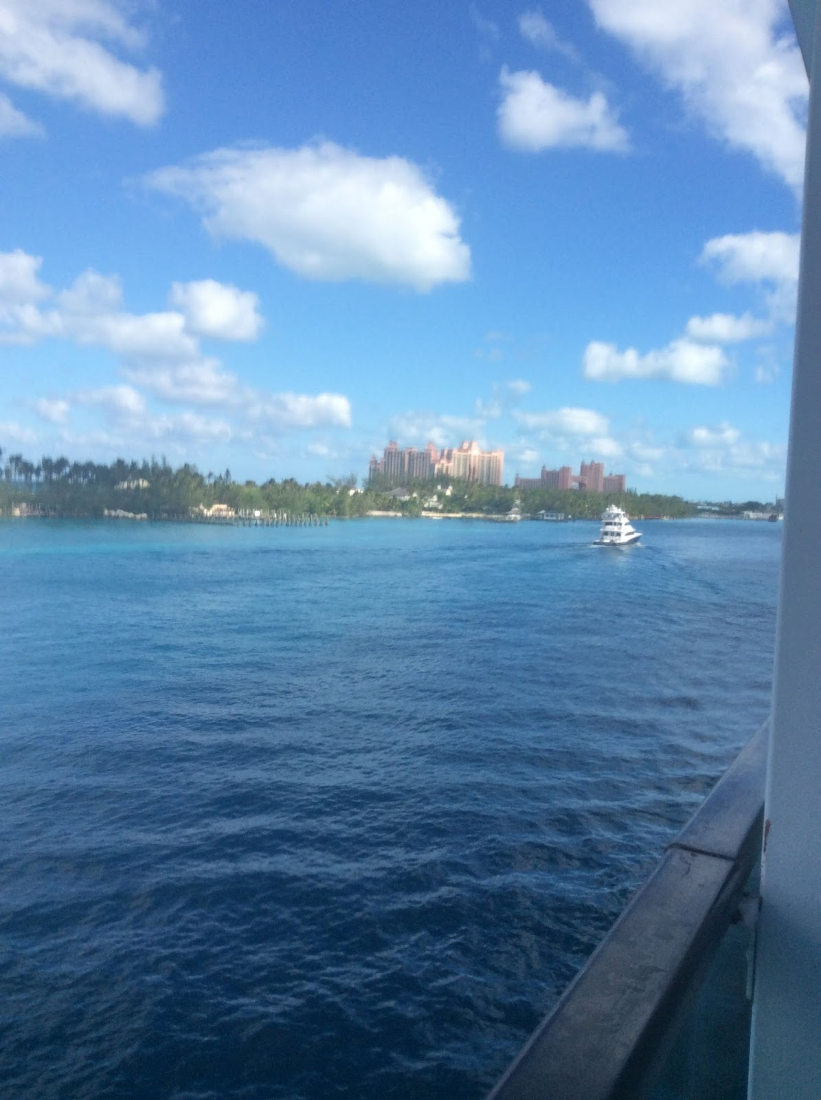 High Calling Cockers: Our Cruise To The Bahamas 2016 On
