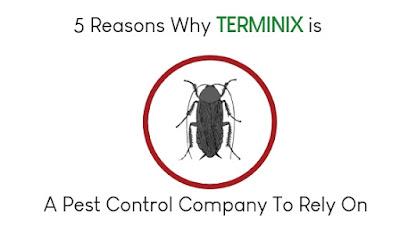terminix, pest control
