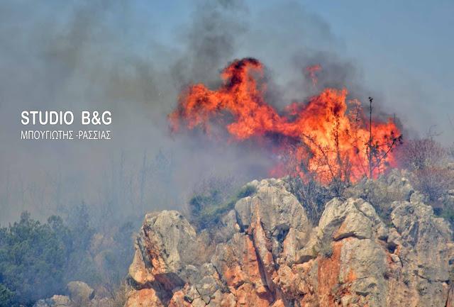 Πυρκαγιά κοντά στο Καπαρέλλι Αργολίδας