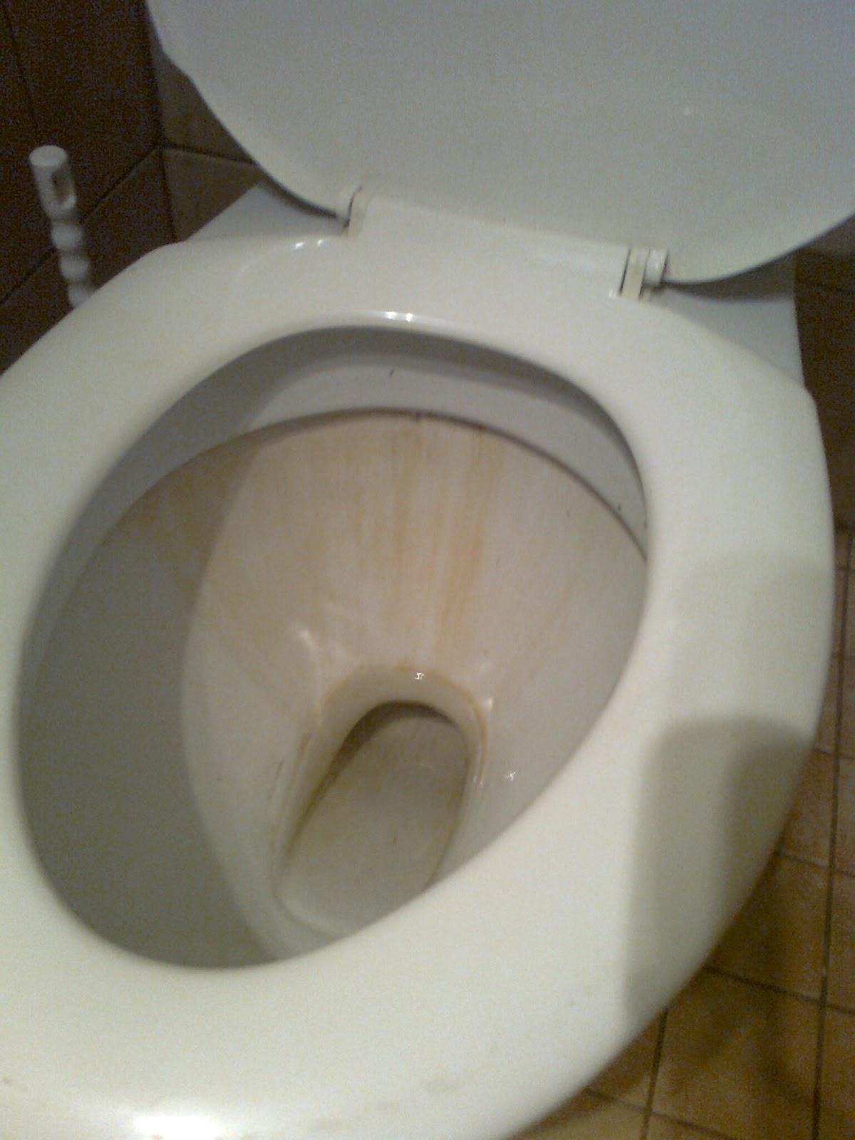 ta bort kalk toalett