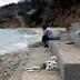 Φωτιά Αττική: Νέα μήνυση από συγγενείς οκτώ θυμάτων