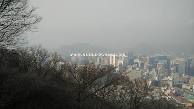 www.ninnarosmina.com