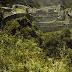 """El camino del Inca a Machu Picchu """"un viaje inolvidable"""""""