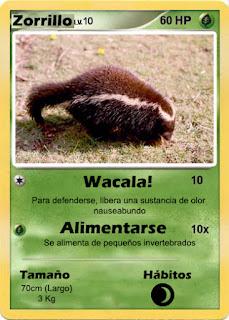 Cartas de Pokemon con Fauna uruguaya (Pradera) - Zorrillo