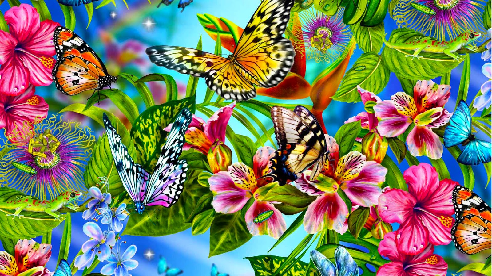 Colorful Butterfly HD Wallpapers | Real & Artistic