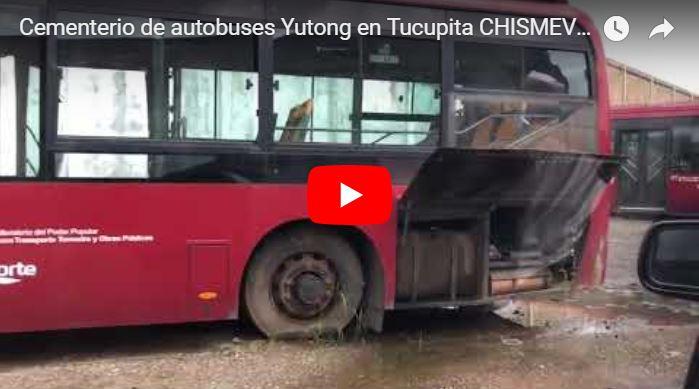 Diputada revela el cementerio de autobuses nuevos en Tucupita tras el guiso millonario