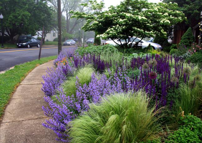 is THE UK's No.1 Gardening Website