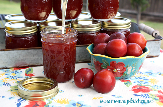 Homemade Plum Jelly