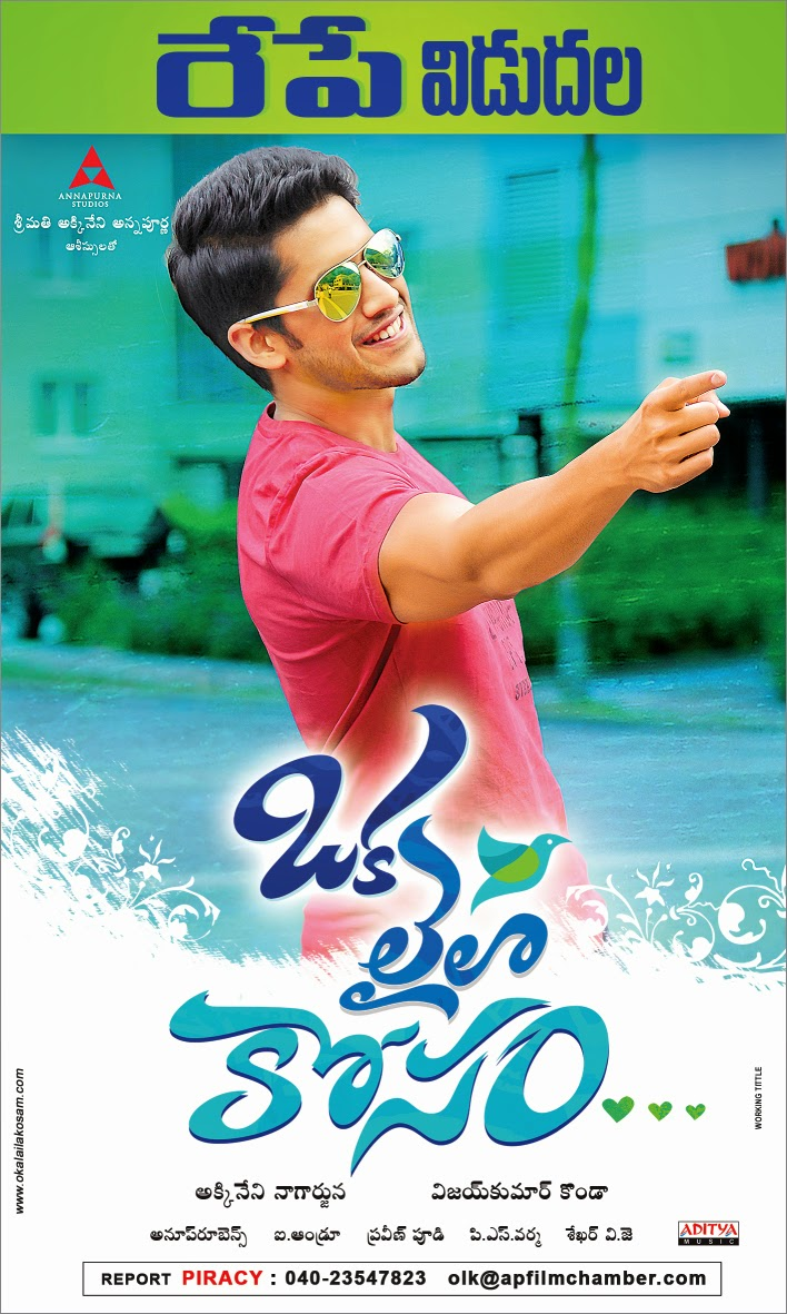 Oka Laila Kosam 2014 Dual Audio 720p UNCUT HDRip [Hindi – Telugu] 940MB Download