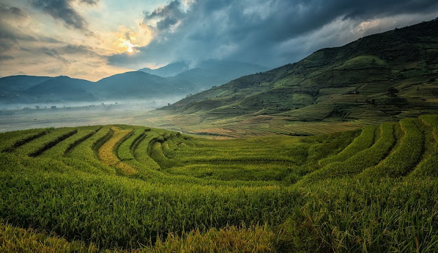 Sapa Terraced Fields - One of the 7 most magnificent terraced fields in the World