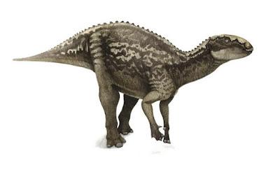 Fukuisaurus