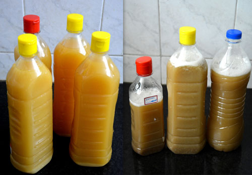 Homemade Fruit Enzyme Cleaner