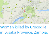 http://sciencythoughts.blogspot.co.uk/2017/09/woman-killed-by-crocodile-in-lusaka.html