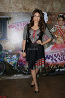 Special Screening Of movie Anarkali Of Arrah 09.JPG