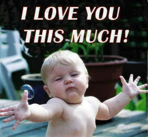 Amazing and Funny Collection of I Love You Memes - Best ...