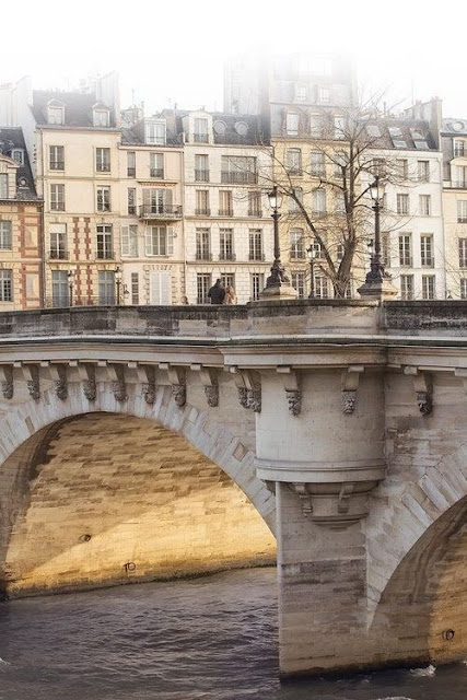 Pont Neuf, Paris Photography