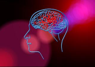 Padrões do cérebro ao lidar com o medo em jovens e adultos