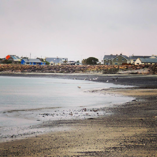 Day Trip from Dingle Town to Tralee - Beach at Castlegregory