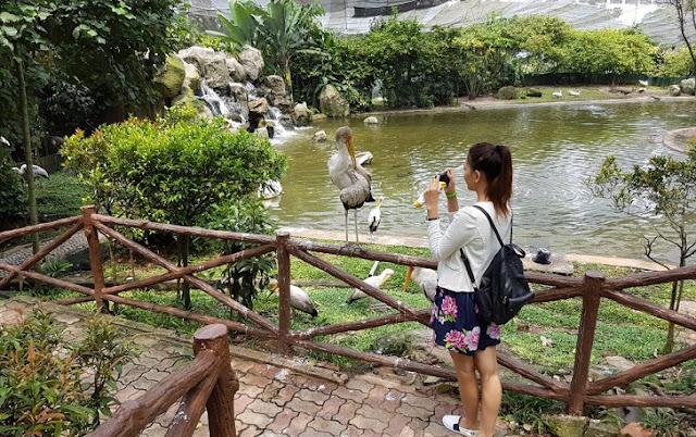 6. Kuala Lumpur Bird Park (Taman Burung Kuala Lumpur)