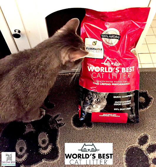 Mom Likes to Think About The Cat (ME!) and NOT THE (LITTER) BOX! #WasteLessLitter #Ad