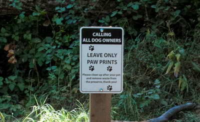 Dog Parks in the Bay Area
