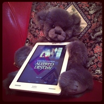 A fuzzy grey teddy bear sits propped against a black brocade cushion in a red chair, a white Kobo cradled between his paws. The Kobo's screen shows the cover of Altered Destiny, featuring a silhouetted woman standing against a forest sunset with a sword over her shoulder. Some indistinct framed pictures are also reflected in the screen.
