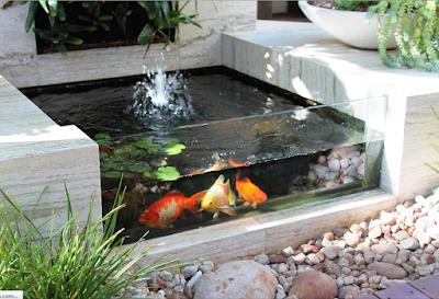 Inspirasi Model Kolam Ikan Minimalis
