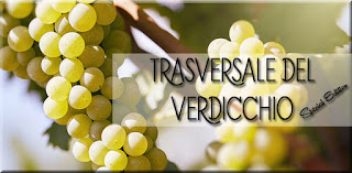 degustazione verdicchio trasversale vino