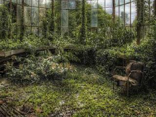 Juego Ancient Greenhouse Escape Solución