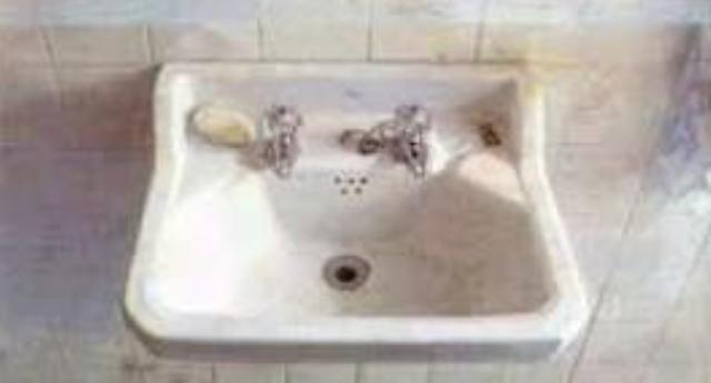 Lavabo por favor_Argonauta en la pecera