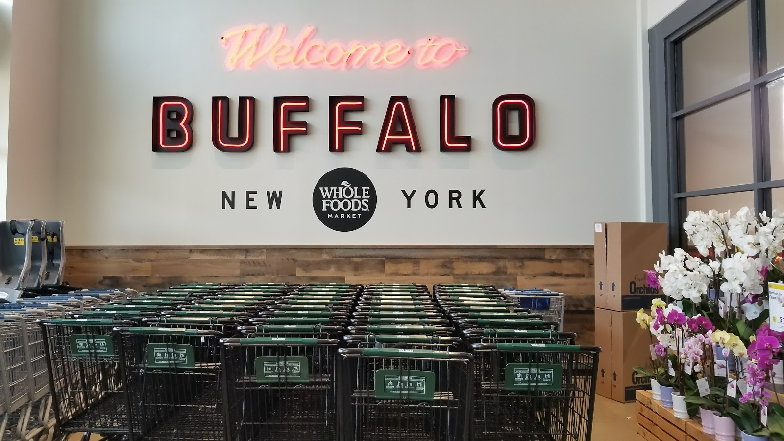 15 Reasons to Visit the New Whole Foods Market in Buffalo, NY   The