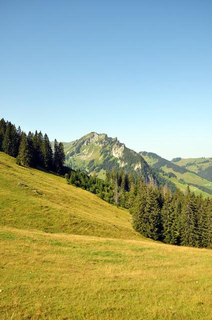 View from Riggisalp // Sicht von Riggisalp