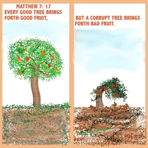 You Will Know Tree Its Fruit